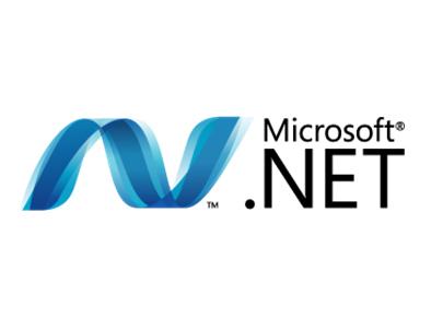 SVILUPPATORE .NET (DOTNET)