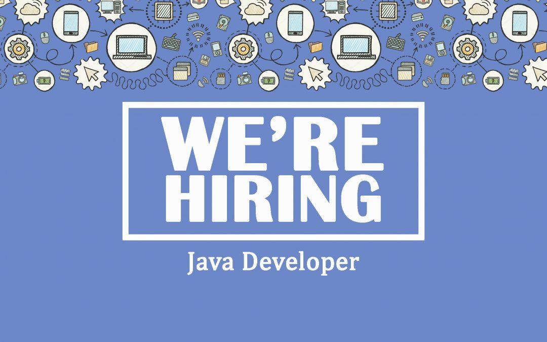 2 sviluppatori Java: FrontEnd e BackEnd